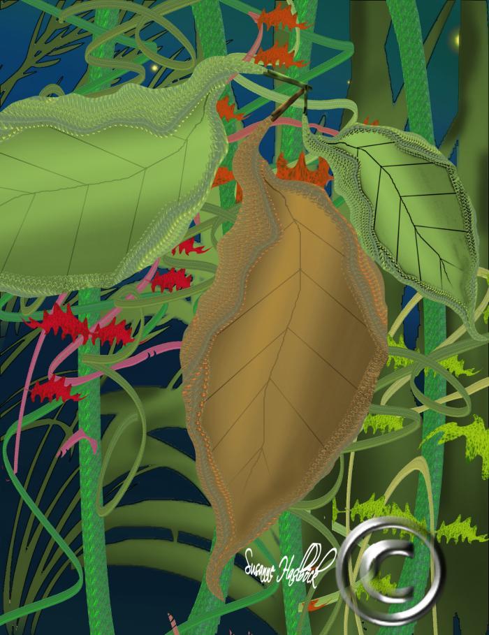 Malen for Dschungel malen